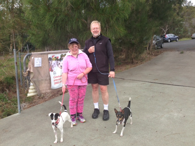Dog Rescue Northern Beaches